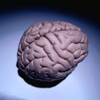расшевелить мозг